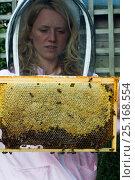 Купить «Heather Moore, bee consultant with frame of honey bees (Apis mellifera) in garden. Bristol, Avon, England, UK. August 2014.», фото № 25168554, снято 18 августа 2018 г. (c) Nature Picture Library / Фотобанк Лори