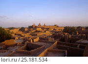 View over the town of Djenne. Mali, 2005-2006. Стоковое фото, фотограф Steve O. Taylor (GHF) / Nature Picture Library / Фотобанк Лори