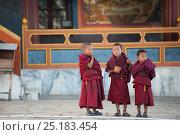 Купить «Young monks watching monastic dance during Torgya festival. Galdan Namge Lhatse Monastery, Tawang, Arunachal Pradesh, India. January 2014.», фото № 25183454, снято 15 августа 2018 г. (c) Nature Picture Library / Фотобанк Лори