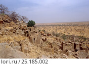 View from the Bandiagara escarpment. Mali, 2005-2006. Стоковое фото, фотограф Steve O. Taylor (GHF) / Nature Picture Library / Фотобанк Лори
