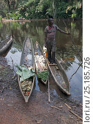 Купить «Man with vegetables in dugout wooden canoes on riverbank, Monkoto, Salonga National Park, Equateur, Democratic Republic of the Congo, May 2012.», фото № 25185726, снято 25 марта 2019 г. (c) Nature Picture Library / Фотобанк Лори