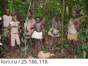 Купить «Mbuti pygmy initiation hunt, with two boys in traditional blue body paint and straw skirt. One boy is holding catch of Blue Duiker (Philantomba monticola...», фото № 25186118, снято 9 июля 2020 г. (c) Nature Picture Library / Фотобанк Лори