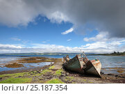 Abandoned fishing boats on beach, Salen, Isle of Mull, Scotland, UK. June 2013. Стоковое фото, фотограф Alex Hyde / Nature Picture Library / Фотобанк Лори