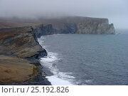 Купить «Coastline of Wrangel Island in mist, Far Eastern Russia, September 2011.», фото № 25192826, снято 3 марта 2020 г. (c) Nature Picture Library / Фотобанк Лори