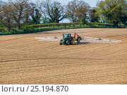 Купить «Tractor spraying herbicide to prevent weed growth in Sugarbeet (Beta vulgaris) crop, Norfolk, UK, April.», фото № 25194870, снято 21 июня 2018 г. (c) Nature Picture Library / Фотобанк Лори