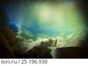 Купить «Underwater landscape of the Clearwater river, outside Clearwater cave. Tributary of the Sungai Melinau river, Gunung Mulu National Park, Sarawak, Borneo...», фото № 25196930, снято 20 ноября 2018 г. (c) Nature Picture Library / Фотобанк Лори