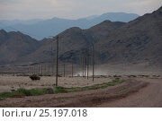 Купить «Road into the Richtersveld National Park and World Heritage Site, Northern Cape, South Africa, August 2011.», фото № 25197018, снято 22 августа 2018 г. (c) Nature Picture Library / Фотобанк Лори