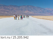 Tourists exploring Badwater basin, Death Valley National Park, California, USA, March 2013. Стоковое фото, фотограф Juan Carlos Munoz / Nature Picture Library / Фотобанк Лори