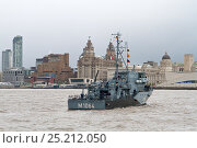 Купить «German mine-hunter 'Groemitz' arriving in Liverpool for the  Battle of the Atlantic 70th Anniversary commemoration, with the Royal Liver Buildings in background...», фото № 25212050, снято 21 мая 2018 г. (c) Nature Picture Library / Фотобанк Лори
