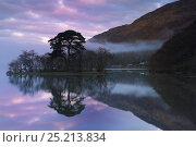 Купить «Dawn reflections on Loch Awe, Argyll and Bute, Scotland, April 2011.», фото № 25213834, снято 19 июля 2018 г. (c) Nature Picture Library / Фотобанк Лори