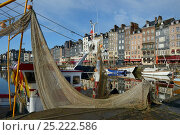 Купить «Honfleur harbour with fishing boat, France, March 2013», фото № 25222586, снято 22 мая 2018 г. (c) Nature Picture Library / Фотобанк Лори