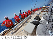 Купить «Crew hiking-out on board J-Class replica 'Ranger' during training for the Superyacht Cup, Palma, Majorca, Spain, June 2013. All non-editorial uses must be cleared individually.», фото № 25228154, снято 23 сентября 2018 г. (c) Nature Picture Library / Фотобанк Лори