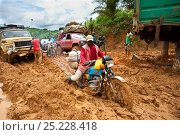 Vehicles stuck in deep mud - the onset of the rainy season deteriorates dirt roads making transport difficult, Cameroon, August 2009. Стоковое фото, фотограф Jabruson / Nature Picture Library / Фотобанк Лори