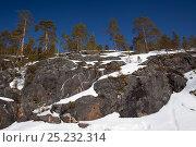 Купить «Mammoth painted on rock, Arctic circle Dive Center, White Sea, Karelia, northern Russia, March 2010», фото № 25232314, снято 23 марта 2019 г. (c) Nature Picture Library / Фотобанк Лори