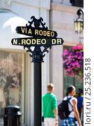 Купить «Rodeo Drive sign, Beverly Hills, Los Angeles, California, USA, July 2011», фото № 25236518, снято 23 сентября 2018 г. (c) Nature Picture Library / Фотобанк Лори