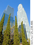 Купить «Looking up at skyscrapers in downtown Los Angeles, California, USA, July 2011», фото № 25238486, снято 22 августа 2018 г. (c) Nature Picture Library / Фотобанк Лори