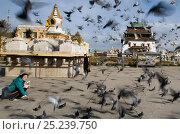 Купить «Woman feeding feral pigeons in front of Gandan Monastery, Ulan Bator, Mongolia, September», фото № 25239750, снято 19 августа 2018 г. (c) Nature Picture Library / Фотобанк Лори