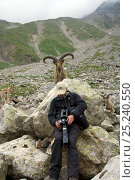 Photographer Patricio Robles Gil reviewing his work with a West Caucasian tur (Capra caucasica) behind him. Kabardino-Balkarsky Nature Reserve, Caucasus Region of Russia. Стоковое фото, фотограф Igor Shpilenok / Nature Picture Library / Фотобанк Лори