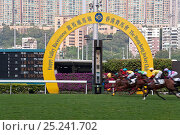 Купить «Horses race past large scoreboard during race at Happy Valley racecourse, Wan Chai, Hong Kong, China 2007», фото № 25241702, снято 22 августа 2018 г. (c) Nature Picture Library / Фотобанк Лори