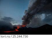 Купить «Dark ash plume and stream of red hot  lava from Plosky Tolbachik Volcano eruption, Kamchatka Peninsula, Russia, 15 December 2012», фото № 25244730, снято 9 декабря 2019 г. (c) Nature Picture Library / Фотобанк Лори