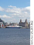 Купить «Cruise liner 'Ocean Countess', the first cruise ship to start and finish a cruise from the Liverpool waterfront for 40 years, seen here at the Liverpool...», фото № 25261862, снято 17 августа 2018 г. (c) Nature Picture Library / Фотобанк Лори