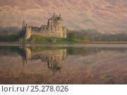 Купить «Kilchurn Castle on Loch Awe, Argyll and Bute, Strathclyde, Scotland, UK, April 2011», фото № 25278026, снято 19 июля 2018 г. (c) Nature Picture Library / Фотобанк Лори