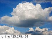 Купить «Cumulus mediocris clouds, Luxembourg», фото № 25278454, снято 17 августа 2018 г. (c) Nature Picture Library / Фотобанк Лори