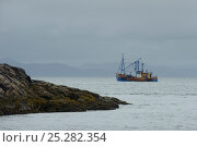 Купить «Scallop dredger Dawn Maid TN102 fishing near the Isle of Coll, Inner Hebrides, Scotland, UK, July 2011», фото № 25282354, снято 14 августа 2018 г. (c) Nature Picture Library / Фотобанк Лори