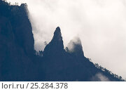 Купить «Mountain ridges of Caldera de Taburiente silhouetted through clouds. View from Roque de los Muchachos, La Palma Island, Canary Islands, Spain, February.», фото № 25284378, снято 21 октября 2018 г. (c) Nature Picture Library / Фотобанк Лори