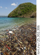 Купить «Coastal pollution, Philippines, May 2006», фото № 25302306, снято 19 ноября 2019 г. (c) Nature Picture Library / Фотобанк Лори
