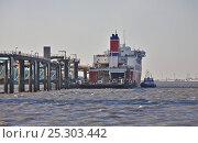 "Купить «Stena Line ferry ""Mersey Seaways"" loading with fuel tender alongside. Birkenhead, River Mersey, England, May 2011.», фото № 25303442, снято 15 августа 2018 г. (c) Nature Picture Library / Фотобанк Лори"