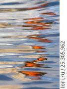 Купить «Mute swan (Cygnus olar) reflection in water, UK», фото № 25305962, снято 20 октября 2018 г. (c) Nature Picture Library / Фотобанк Лори