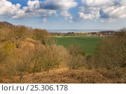 Купить «Weybourne village and coastline viewed from Kelling Heath Nature Reserve, Norfolk, UK, April 2008», фото № 25306178, снято 15 октября 2018 г. (c) Nature Picture Library / Фотобанк Лори