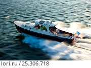 Купить «Hinckley T38 speedboat travelling at speed. Rhode Island, USA, August 2008. All non-editorial uses must be cleared individually.», фото № 25306718, снято 15 августа 2018 г. (c) Nature Picture Library / Фотобанк Лори