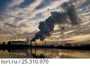 Купить «Sugar Beet (Beta vulgaris) processing plant in the Fens, Norfolk, UK, January 2008», фото № 25310970, снято 23 февраля 2018 г. (c) Nature Picture Library / Фотобанк Лори