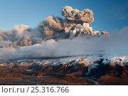 Купить «Ash plume from a subglacial volcanic eruption under the Eyjafjallajokull ice cap, Iceland, April 2010», фото № 25316766, снято 15 ноября 2019 г. (c) Nature Picture Library / Фотобанк Лори