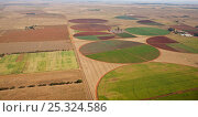 Купить «Irrigation crop circles as seen from the air east of Potchefstroom, South Africa, April 2009», фото № 25324586, снято 21 января 2018 г. (c) Nature Picture Library / Фотобанк Лори