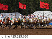 Купить «Traditionally dressed Berber warriors, mounted on Barb and Arab Barb horses, galloping in formation raising their guns during the Fantasia in Dar Es Salam, Morocco, June 2010», фото № 25325650, снято 3 июня 2020 г. (c) Nature Picture Library / Фотобанк Лори