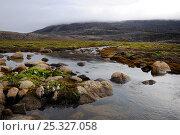 Купить «Canso Channel, Auyuittuq National Park, Baffin Island, Nunavut, Canada,  August 2010», фото № 25327058, снято 28 мая 2020 г. (c) Nature Picture Library / Фотобанк Лори