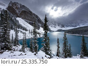 Купить «Morraine Lake, in the Valley of the Ten Peaks, after recent snowfall, Banff National Park, Alberta, Canada. October 2009», фото № 25335750, снято 31 мая 2020 г. (c) Nature Picture Library / Фотобанк Лори