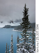Купить «Morraine Lake, in the Valley of the Ten Peaks, after recent snowfall, Banff National Park, Alberta, Canada. October 2009», фото № 25337594, снято 31 мая 2020 г. (c) Nature Picture Library / Фотобанк Лори