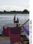 Купить «Woman hanging her washing, pauses to watch the bore and pleasure craft. Severn Estuary. England, August 2009», фото № 25342486, снято 15 августа 2018 г. (c) Nature Picture Library / Фотобанк Лори