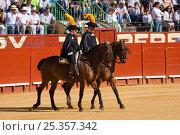 Купить «Two riders open the Corrida de Rejones at a bullfight in the Plaza De Toros, Jerez De La Frontera, Andalusia, Spain. 2009», фото № 25357342, снято 27 мая 2018 г. (c) Nature Picture Library / Фотобанк Лори