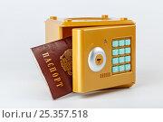 Купить «Надежная защита ваших персональных данных», фото № 25357518, снято 10 февраля 2017 г. (c) Юрий Шурчков / Фотобанк Лори