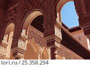 Купить «Court of the Lions (Patio de los Leones), Alhambra de Granada, Granada, Andalusia, Spain. April 2009.», фото № 25358294, снято 24 сентября 2018 г. (c) Nature Picture Library / Фотобанк Лори