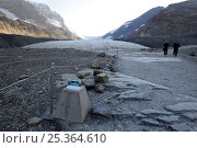 Купить «Marker showing the recession of the Athabasca Glacier from 1992 to 2009, with two people walking along path, Columbia Icefield, Jasper National Park, Rocky Mountains, Alberta, Canada, September 2009», фото № 25364610, снято 17 июля 2019 г. (c) Nature Picture Library / Фотобанк Лори
