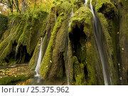 Купить «Waterfalls and abundant mosses (Cratoneuron commutatum) and (Bryum ventricosum) growing on the Labudovac barrier, Upper Lakes, Plitvice Lakes National Park, Croatia, October 2008», фото № 25375962, снято 22 августа 2018 г. (c) Nature Picture Library / Фотобанк Лори