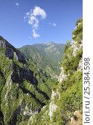 Купить «Maquis scrub vegetation growing on limestone ridges, Mount Olympus, Greece», фото № 25384598, снято 19 августа 2018 г. (c) Nature Picture Library / Фотобанк Лори