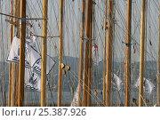Купить «Wooden yacht masts, Les Voiles de St Tropez, France. October 2006.», фото № 25387926, снято 16 августа 2018 г. (c) Nature Picture Library / Фотобанк Лори
