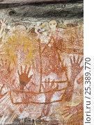 Купить «Aboriginal rock art paintings of hands and creatures at Main Art Site, Mt Borradaile,  Arnhem Land, Northern Territory, Australia», фото № 25389770, снято 15 декабря 2017 г. (c) Nature Picture Library / Фотобанк Лори